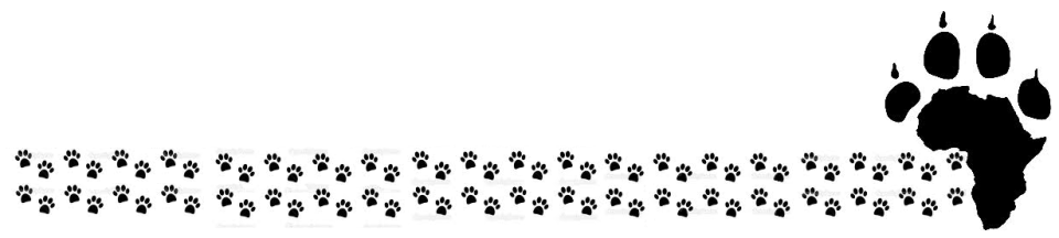 Paw Line With Paw